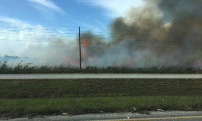 Because of the pre-harvest burning, the Glades communities have suffered economically as well. Whereas Palm Beach county and the state of Florida have seen an increase in real estate values, property values for the Glades community remain stagnant.