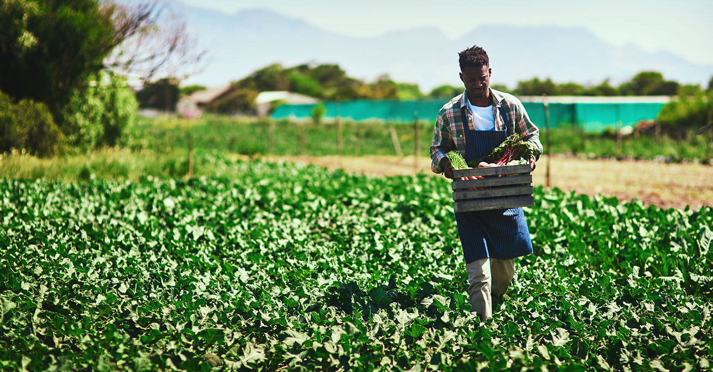 Under the proposal, the government would pay off USDA loans and USDA-guaranteed loans held by socially disadvantaged farmers and give an additional 20 percent to the farmers to cover income taxes associated with the debt relief. (Photo: iStockphoto / NNPA)